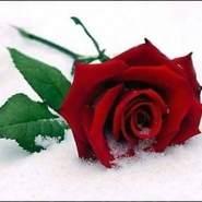 user_qzuam531's profile photo