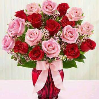 user_fgq54601_Al Qahirah_Kawaler/Panna_Kobieta