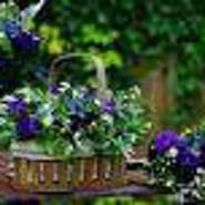 dariusz091966's profile photo