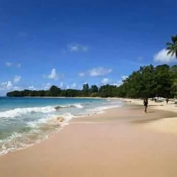 naloseposungul_National Capital District (Port Moresby)_Độc thân_Nữ