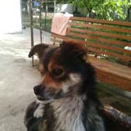 marateditedi's profile photo